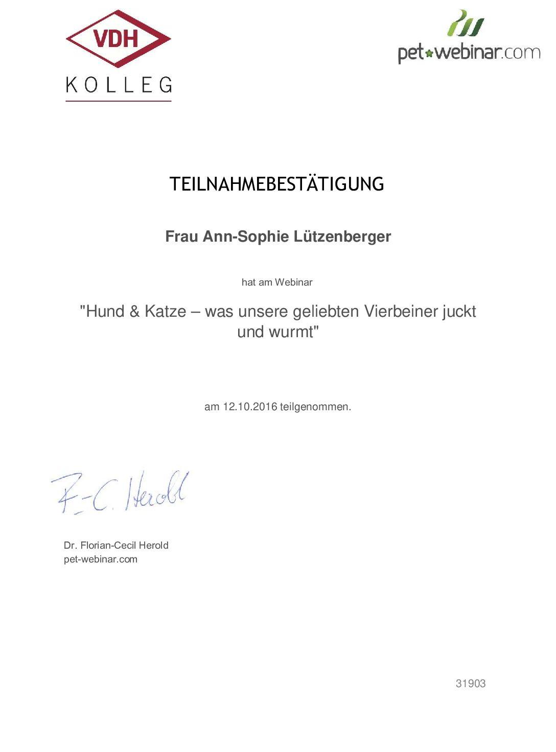 VDH Kolleg 3